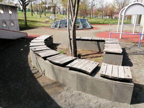 木本を三角型に囲むようにベンチが設置されています。