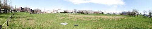パノラマによる芝広場全体。