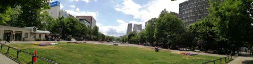 パノラマによる大通公園7丁目全体。