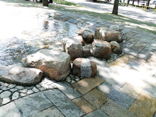 遊水路には、飛び石が設置され、水路を渡れます。
