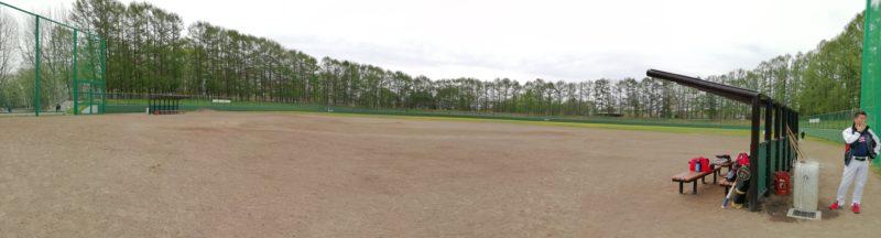 高台野球場全体
