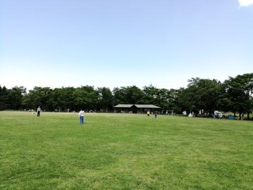 芝広場(多目的スペース)全体