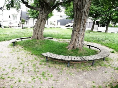 樹木を中心に円状のベンチ