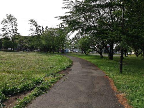 公園の中央を通る園道