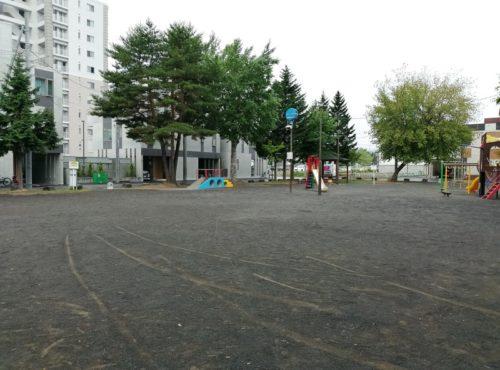多目的広場全体