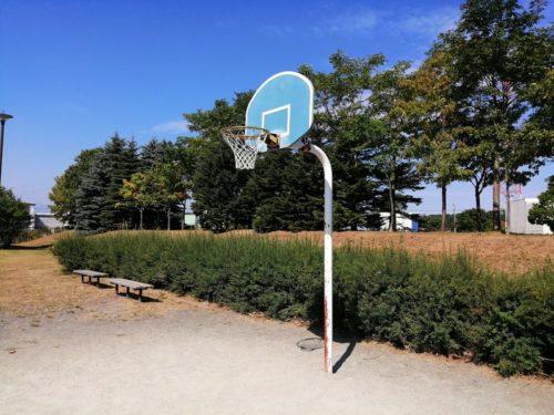 背の低いバスケットゴール