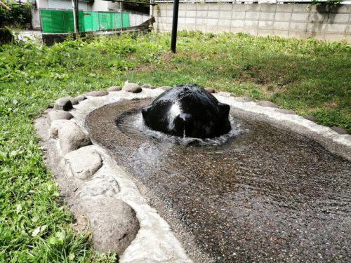 給水エリアの噴水