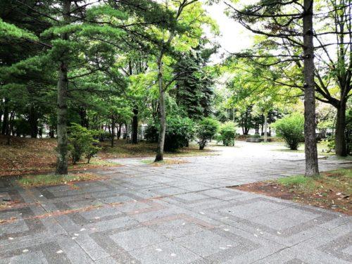 樹林広場全体