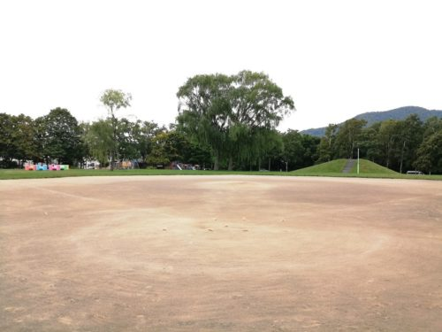 少年野球場全体