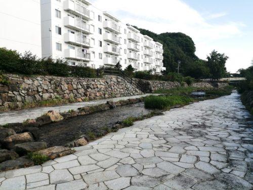 水際の広場