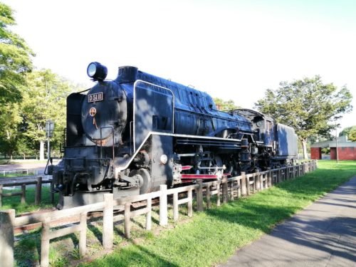 機関車(D5111)