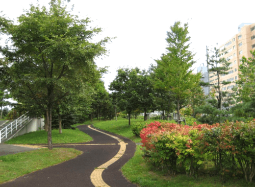 舗装された園道