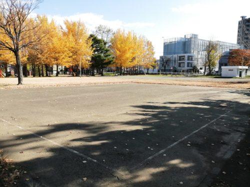 多目的広場(テニスコート)