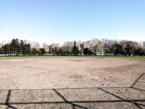 野球場全体
