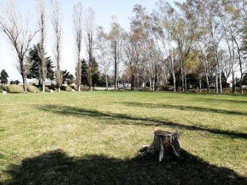 芝生多目的広場