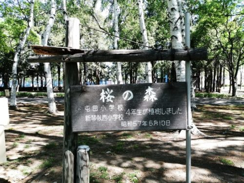 桜の森看板