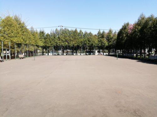 テニスコート全体