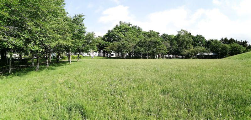 芝生の多目的広場